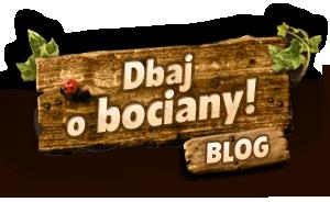 Dbaj o bociany – blog przyrodniczy Krzysztofa Koniecznego o niesamowitym świecie wokół bocianiego gniazda. Patronat: Grupa Energa