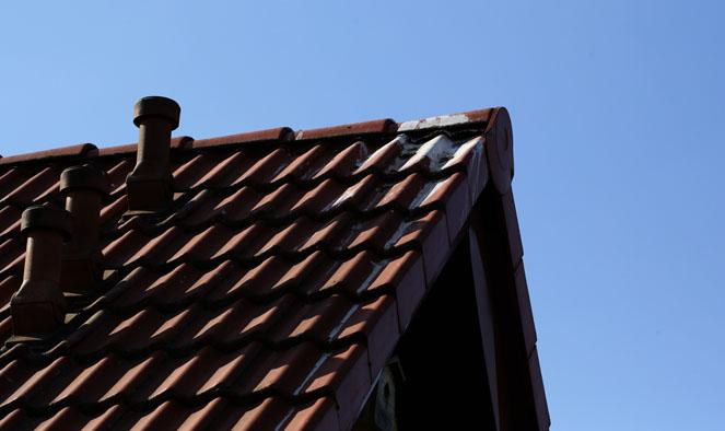 obielony dach