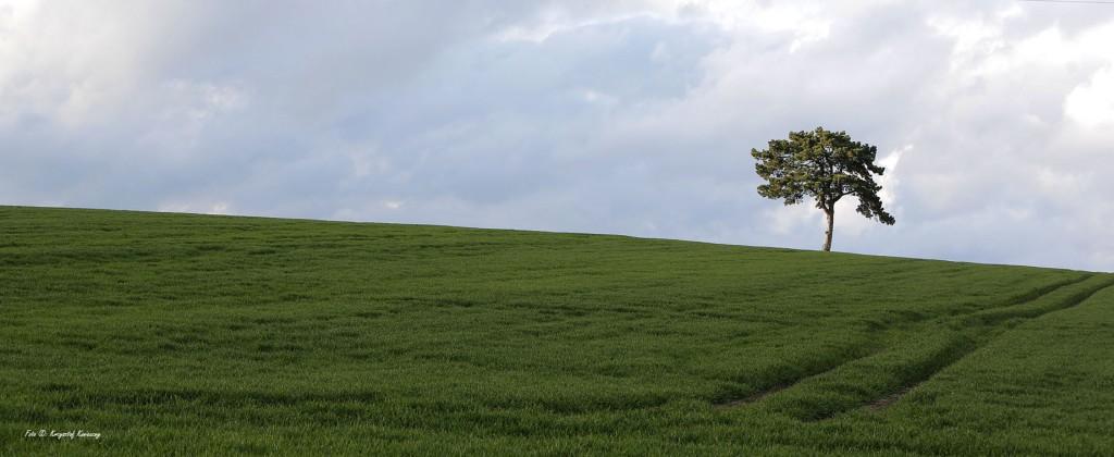 panorama na kwiecień
